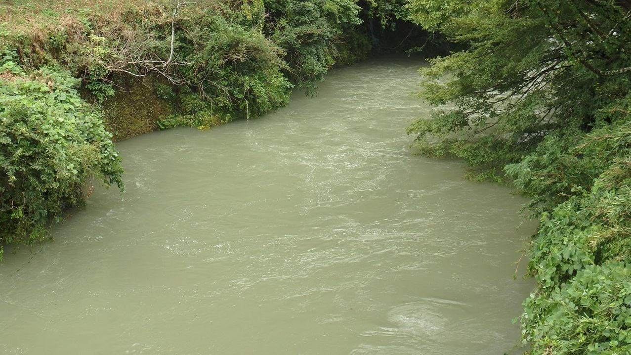 自然風の自然風だより様より『粥川(かゆかわ)と矢納ヶ淵(やとがふち)の矢納の滝(やとのたき)と円空街道』